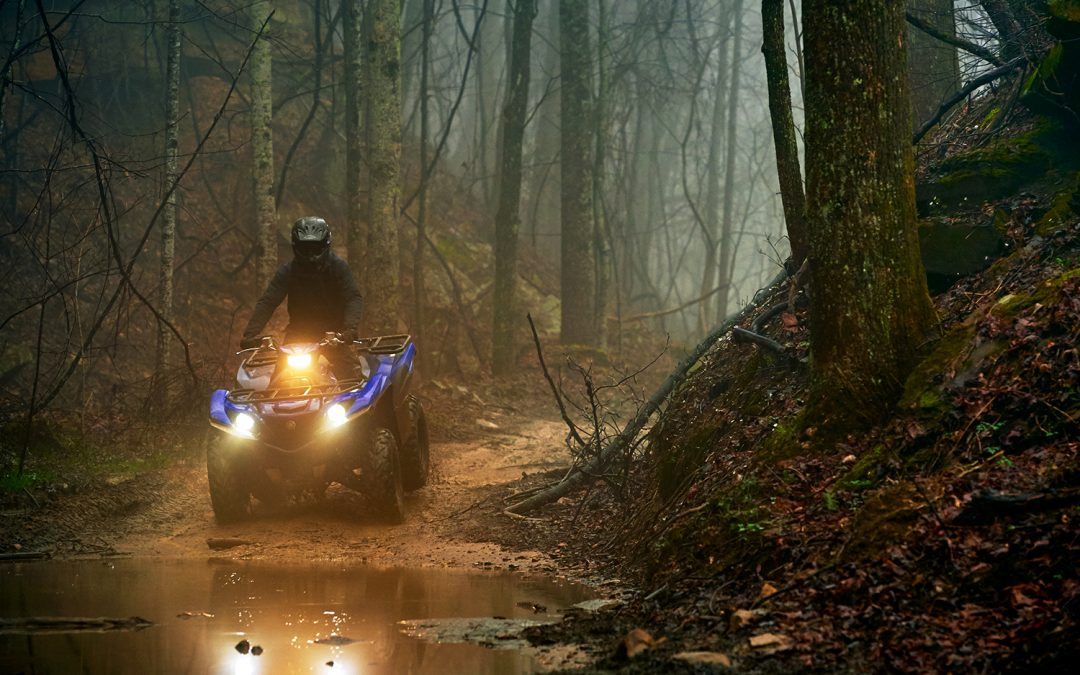 Grizzly EPS ATV